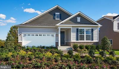 Culpeper Single Family Home For Sale: Chestnut Drive- Onyx