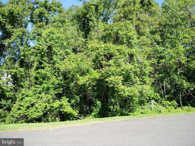 Culpeper Residential Lots & Land For Sale: Pond View Court