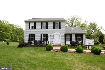 Culpeper County Single Family Home For Sale: 16215 Norman Road