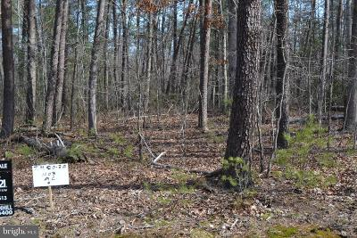 Culpeper County Residential Lots & Land For Sale: 3a Mountain Springs Ln