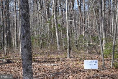 Residential Lots & Land For Sale: 1 Spring Hollow Ln