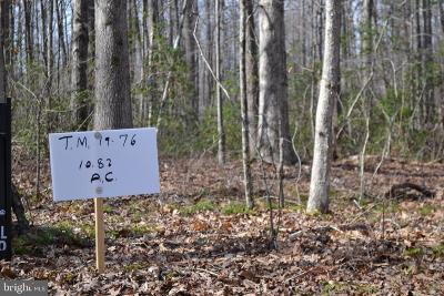 Culpeper County Residential Lots & Land For Sale: 76 Spring Hollow Lane