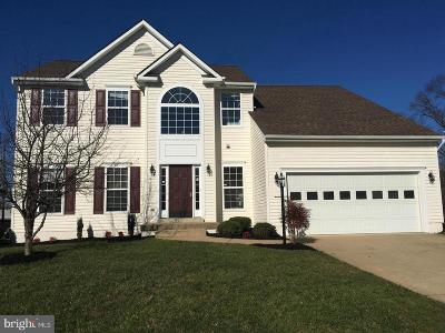 Culpeper Single Family Home For Sale: 530 Windermere Drive