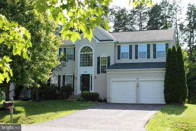 Culpeper Single Family Home For Sale: 224 Stacey Court