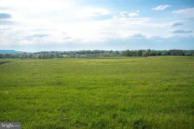 Culpeper County Residential Lots & Land For Sale: James Madison Highway