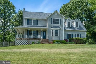 Culpeper County Single Family Home For Sale: 14100 Westwind Lane