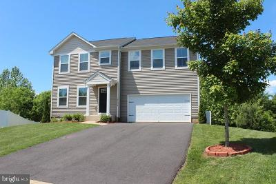 Culpeper Single Family Home For Sale: 18134 Scenic Creek Lane