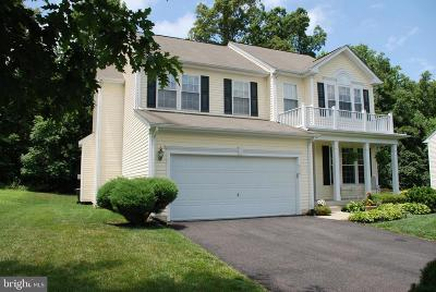 Culpeper County Single Family Home For Sale: 950 Riverdale Circle