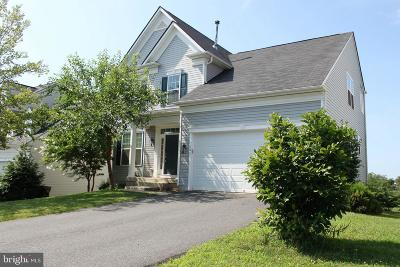 Culpeper County Single Family Home For Sale: 141 Standpipe Road