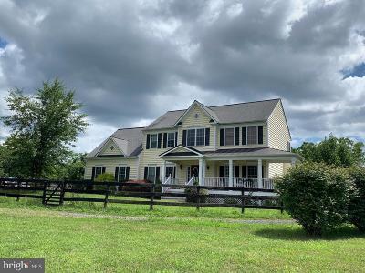 Culpeper County Single Family Home For Sale: 5194 Beach Ridge Lane