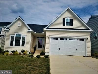 Culpeper Single Family Home For Sale: 691 Blossom Tree Road