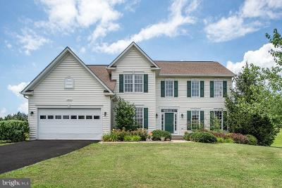 Culpeper Single Family Home For Sale: 12513 Sherwood Forest Drive