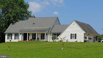 Culpeper County Single Family Home For Sale: 19424 Thoroughfare Lane