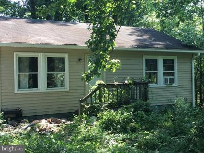 Culpeper Single Family Home For Sale: 21556 Dove Hill Road