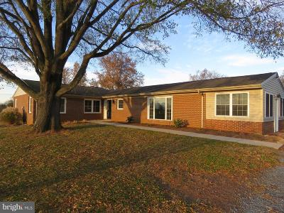 Culpeper County Single Family Home For Sale: 7435 Sperryville Pike