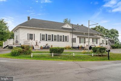 Culpeper County Single Family Home For Sale: 10677 Eggbornsville Road