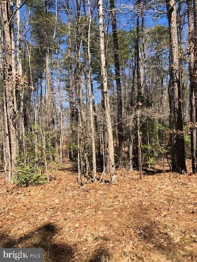 Caroline County Residential Lots & Land For Sale: 114 John Paul Jones Drive