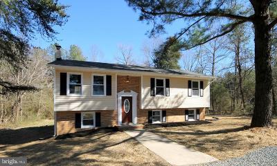 Caroline County Single Family Home For Sale: 20131 Sparta Road