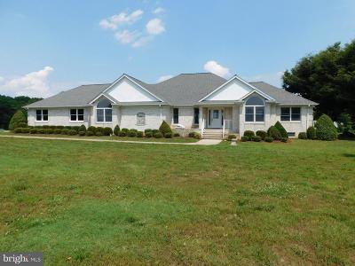 Port Royal Single Family Home For Auction: 29305 Eagle Landing Lane