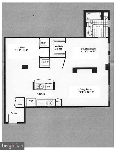Annandale, Falls Church Condo For Sale: 444 Broad Street #213