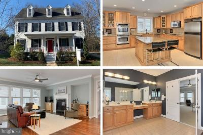 Annandale, Falls Church Single Family Home For Sale: 107 Hillier Street