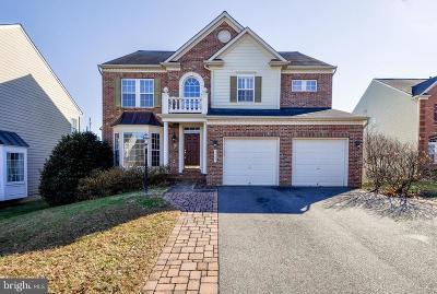 Fredericksburg City Single Family Home For Sale: 1009 Raymond Court