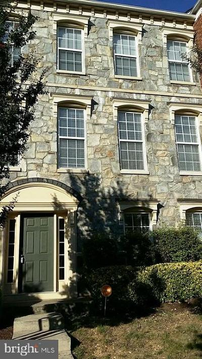 Fredericksburg Rental For Rent: 1605 Wilcox Avenue