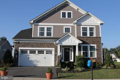 Fredericksburg Single Family Home For Sale: Dameron Ct