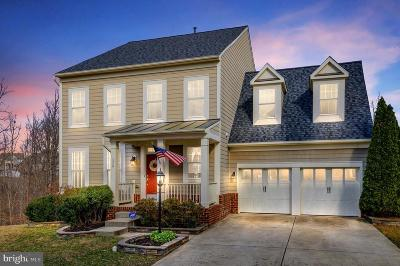 Fredericksburg Single Family Home Active Under Contract: 1319 Walker Drive