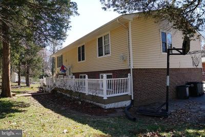 Fredericksburg City Single Family Home For Sale: 11 Apache Terrace