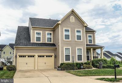 Fredericksburg City Single Family Home For Sale: 1003 Everett Court