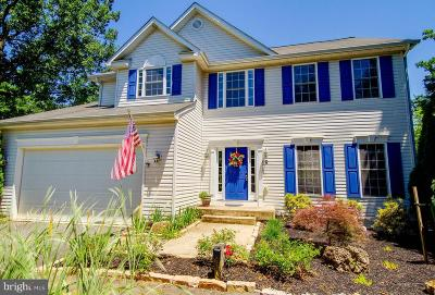 Fredericksburg City Single Family Home For Sale: 2 Browns Lane