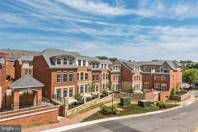 Fairfax, Fairfax Station Condo For Sale: 4003 East Street