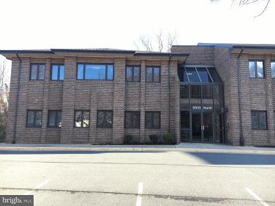 Fairfax, Fairfax Station Condo For Sale: 3905 Railroad Avenue #100&101