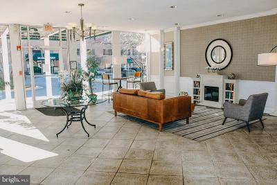 Fairfax Rental For Rent: 10570 Main Street #409