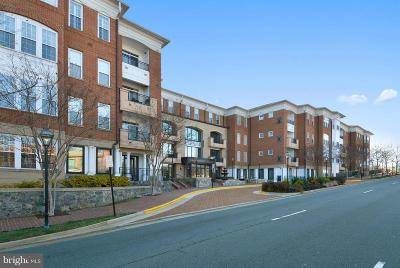 Fairfax, Fairfax Station Condo For Sale: 10328 Sager Avenue #113