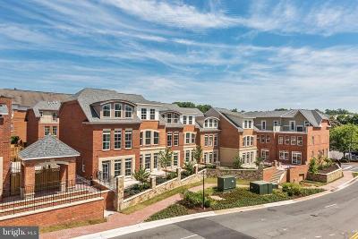 Fairfax Condo For Sale: 4029 East Street