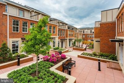 Fairfax, Fairfax Station Condo For Sale: 10372 Sager Avenue