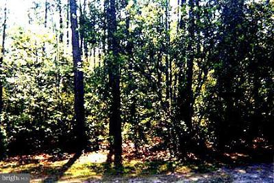 Residential Lots & Land For Sale: 6152 Serenity