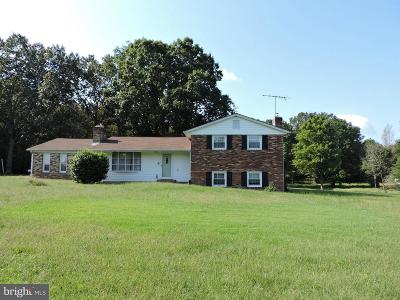Fauquier County Single Family Home For Sale: 10362 Bristersburg Road