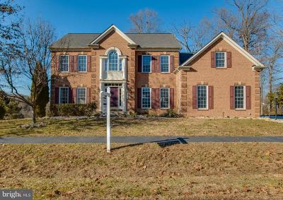 Warrenton Single Family Home For Sale: 6334 Redwinged Blackbird Drive