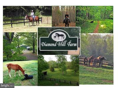 Warrenton Single Family Home For Sale: 8326 Diamond Hill Road