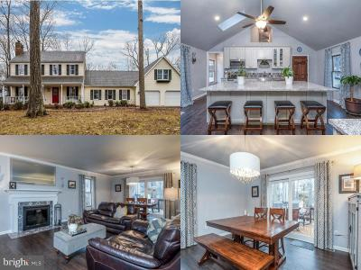 Warrenton Single Family Home Under Contract: 7256 Hastings Lane