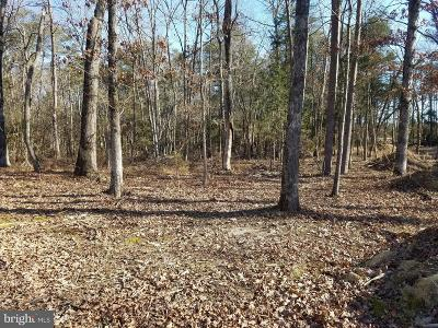 Residential Lots & Land For Sale: Shenandoah Path