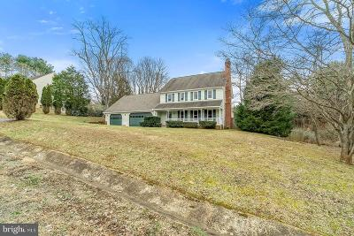 Fauquier County Single Family Home For Sale: 7131 Ivy Hill Drive