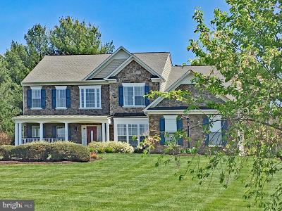 Fauquier County Single Family Home For Sale: 6905 Mill Valley Drive