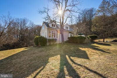Fauquier County Single Family Home For Sale: 3676 Eastview Lane