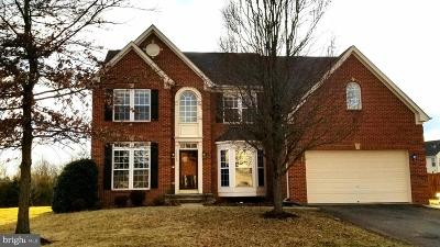 Fauquier County Single Family Home For Sale: 11162 Eagle Court