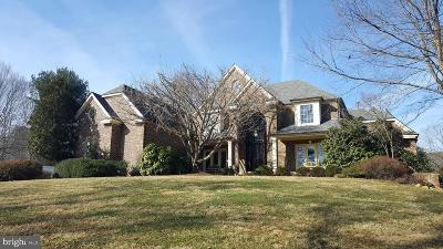 Warrenton Single Family Home For Sale: 7442 Foxview Drive