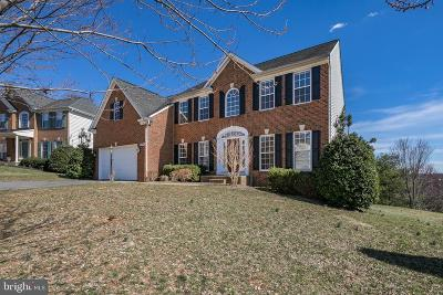 Warrenton Single Family Home For Sale: 209 Pinnacle Court